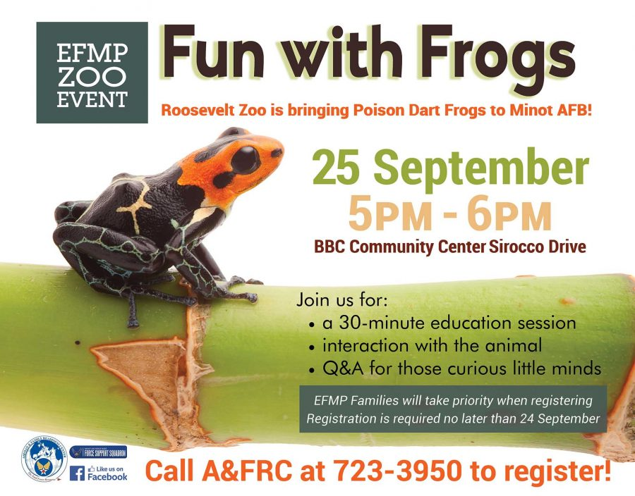 EFMP Event - Fun with Frogs