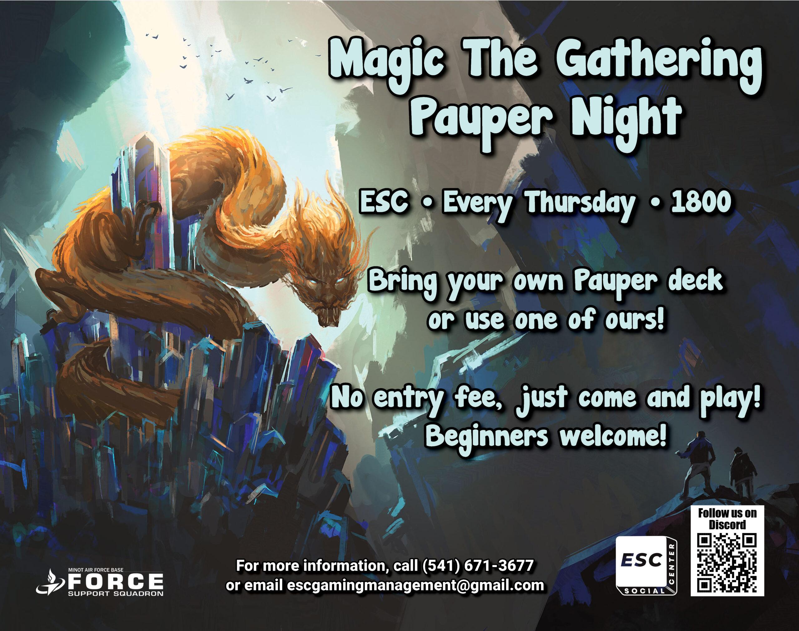 Magic The Gathering Pauper Night